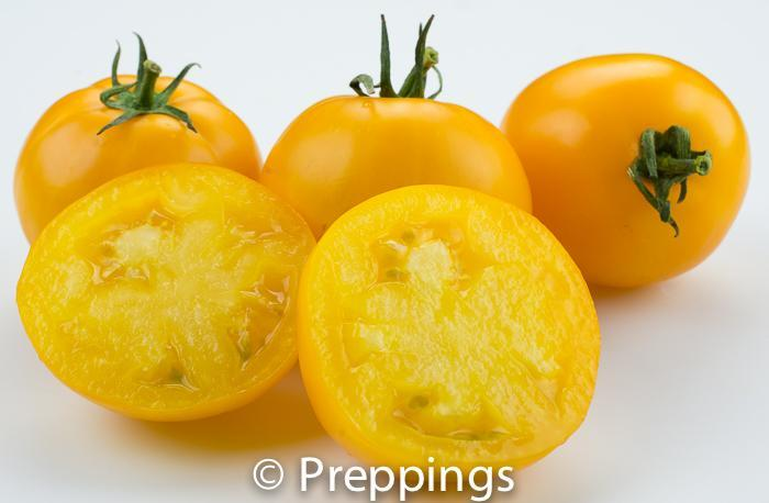 Ingredient Of The Day: Lemon Boy Tomato