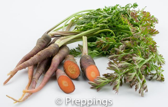 Ingredient Of The Day: Purple Dragon Carrot