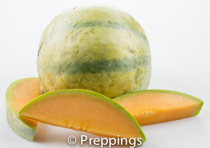 Ingredient Of The Day: Charentais Melon