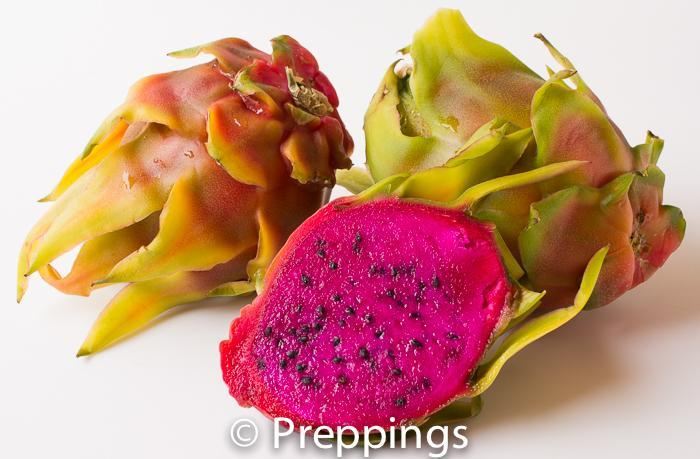 Ingredient Of The Day: Dragon Fruit