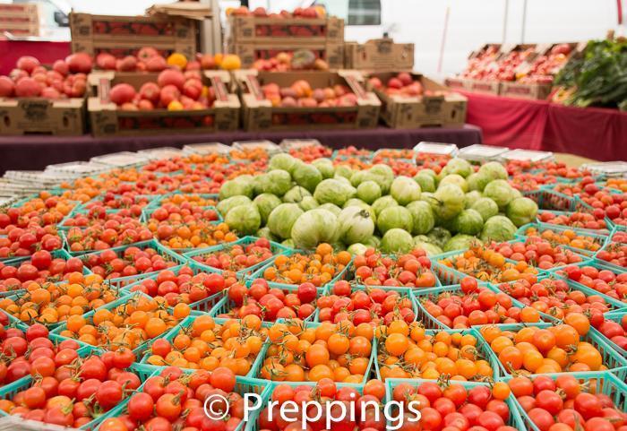 Ingredient Spotlight: Tomatoes