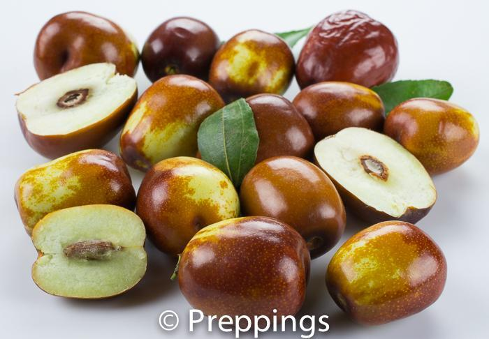 Ingredient Of The Day: Chinese Date
