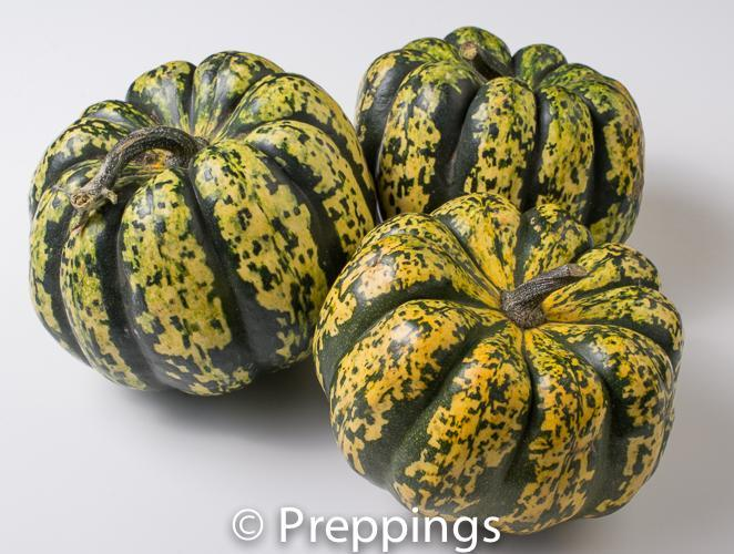 Ingredient Of The Day: Carnival Squash