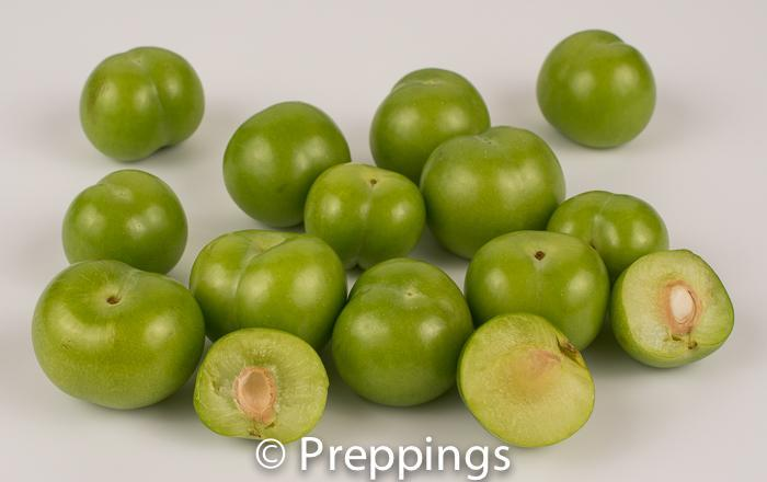 Ingredient Of The Day: Persian Green Plum