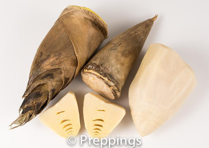 Ingredient Of The Day: Bamboo Shoot