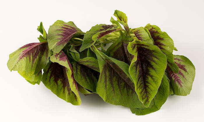 Ingredient Of The Day: Red Amaranth Greens