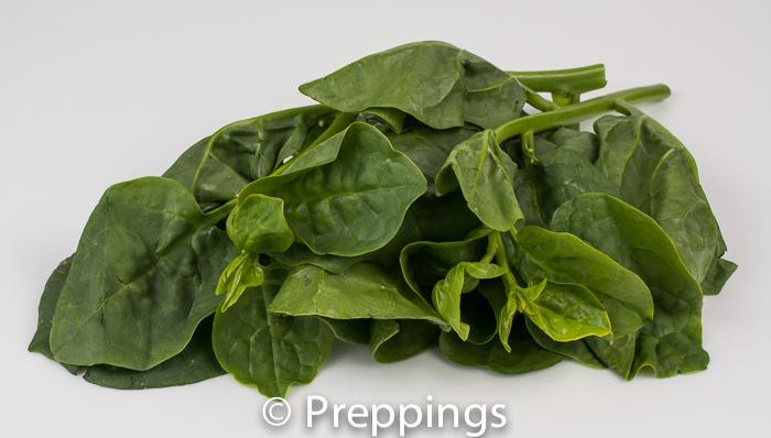 Ingredient Of The Day: Malabar Spinach