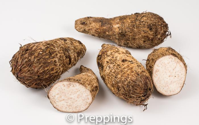 Ingredient Of The Day: Malanga Root