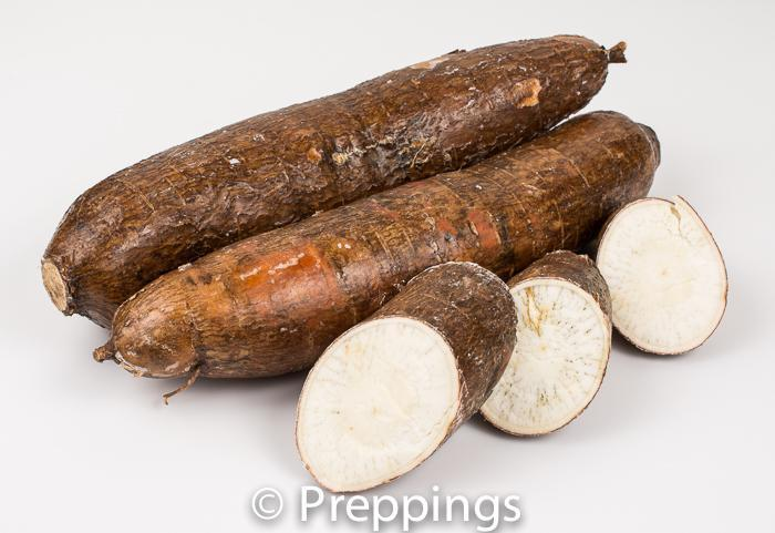 Ingredient Of The Day: Cassava Root