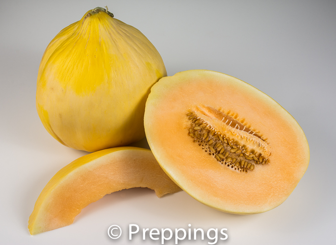 Ingredient Of The Day: Crenshaw Melon