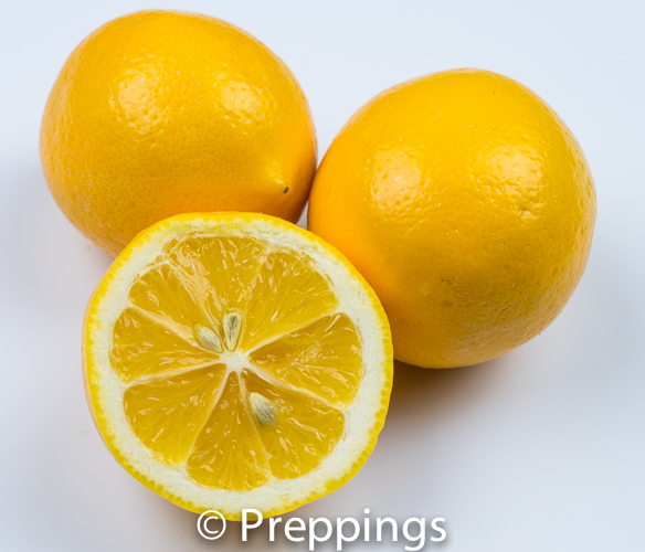 Ingredient Of The Day: Meyer Lemon