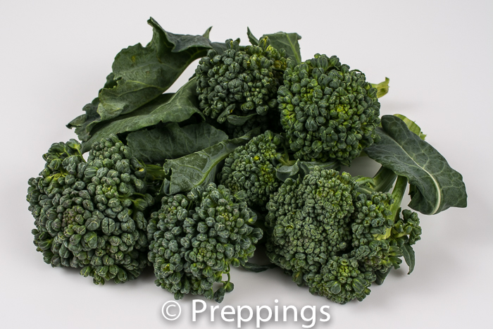 Ingredient Of The Day: Piracicaba Broccoli