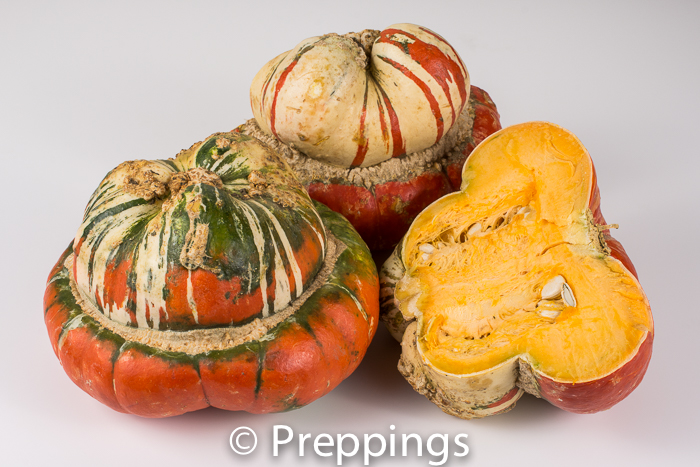 Ingredient Of The Day: Turban Squash