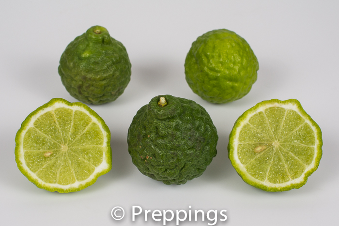 Ingredient Of The Day: Kaffir Lime