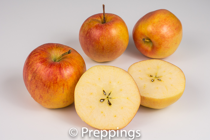 Ingredient Of The Day: Smitten Apple