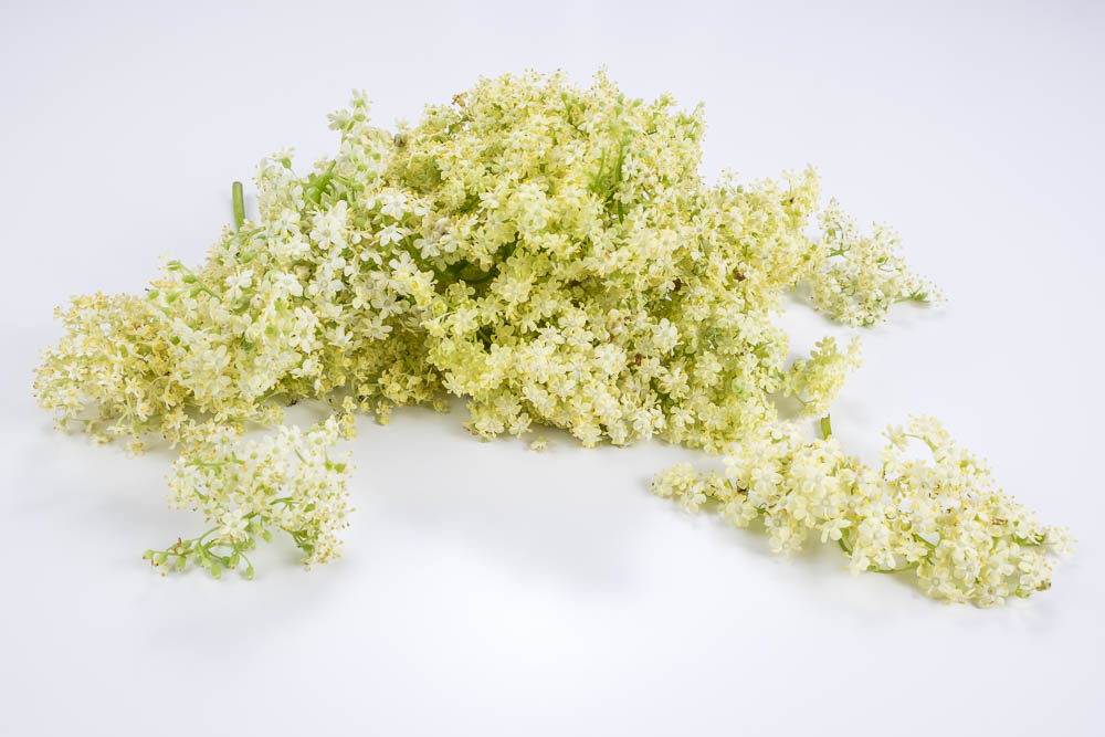 Ingredient Of The Day: Elderflower