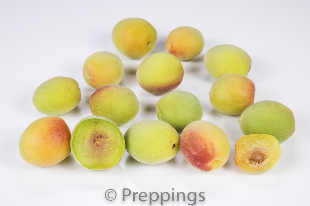 Ingredient Of The Day: Ume Plum