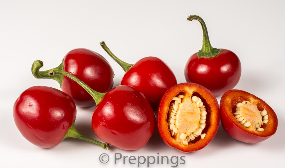Ingredient Of The Day: Red Cherry Chile Pepper