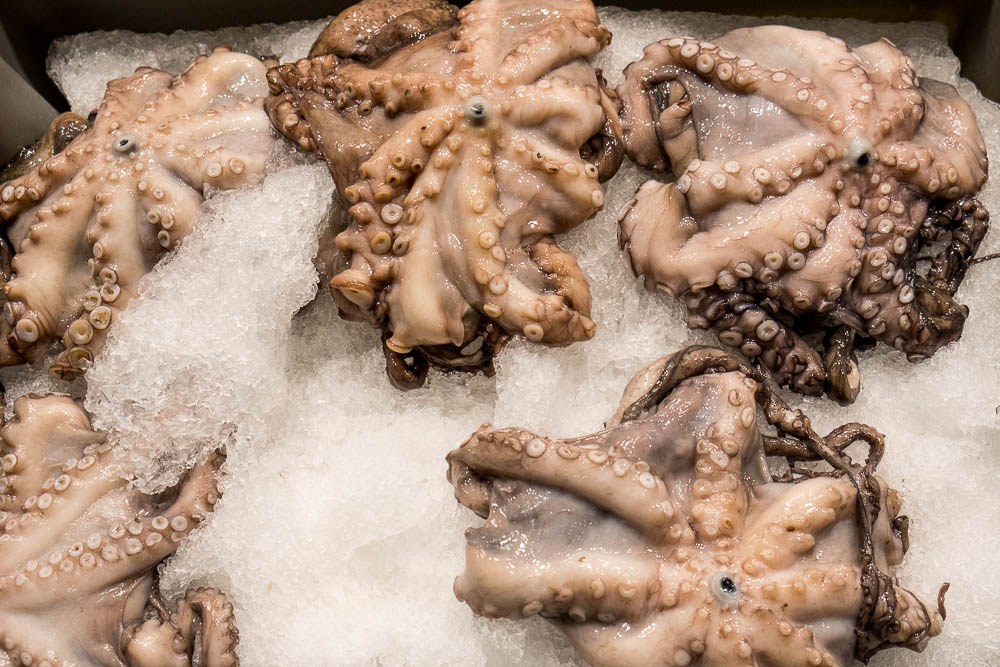 Ingredient Of The Day: Octopus
