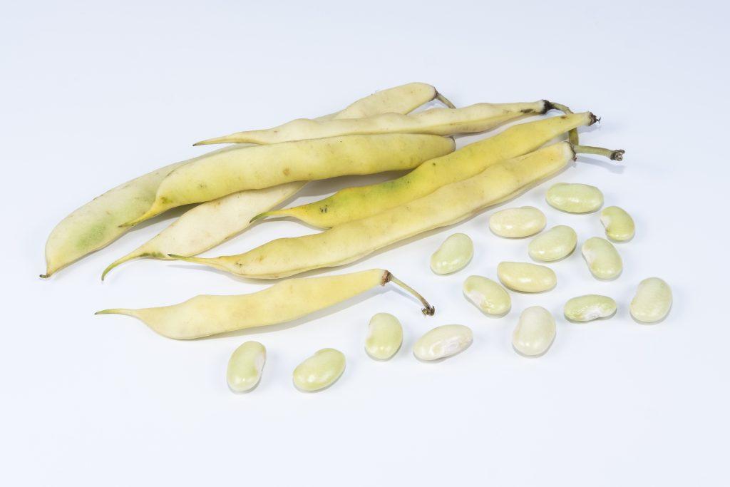 Peruano Bean