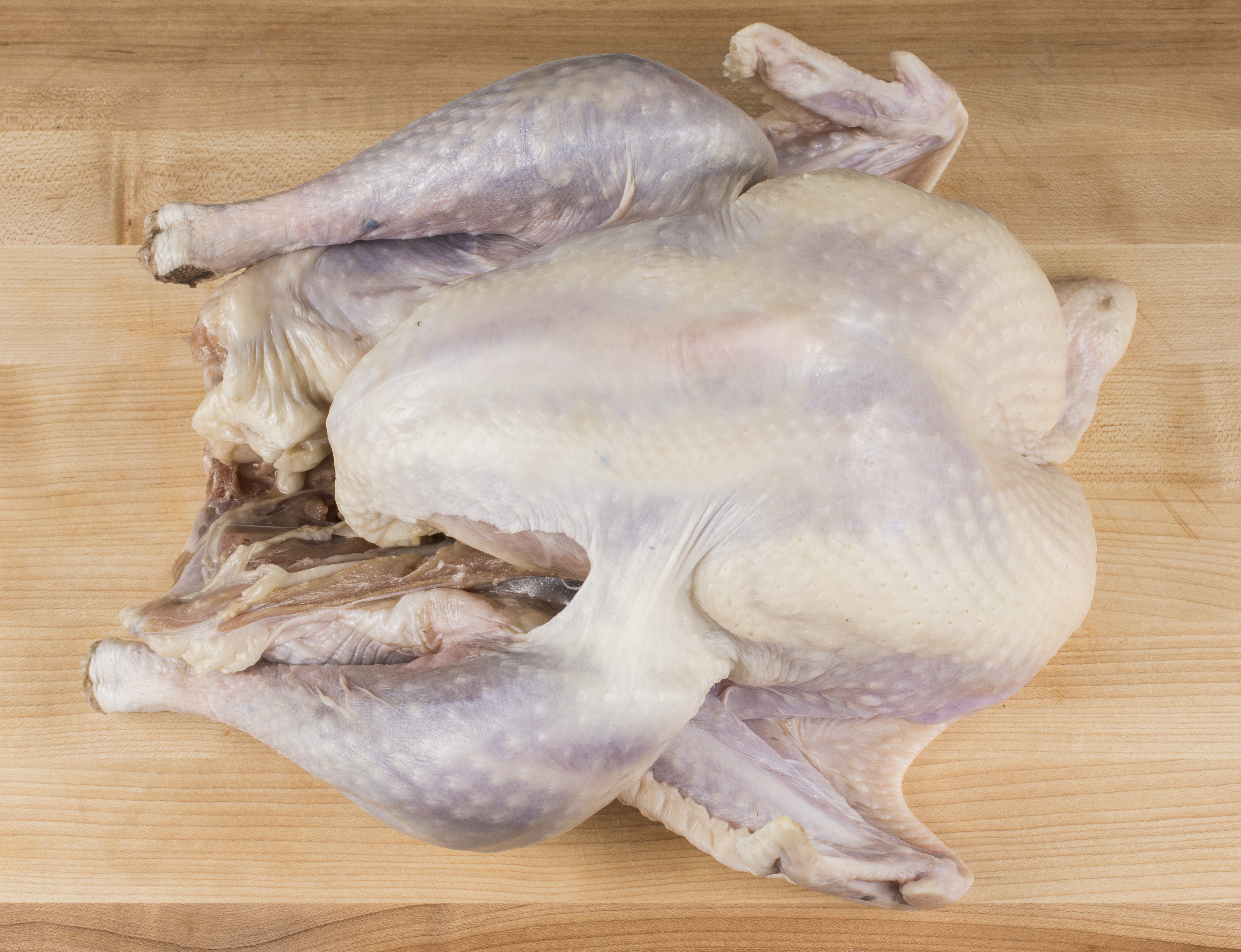 Ingredient Of The Day: Turkey