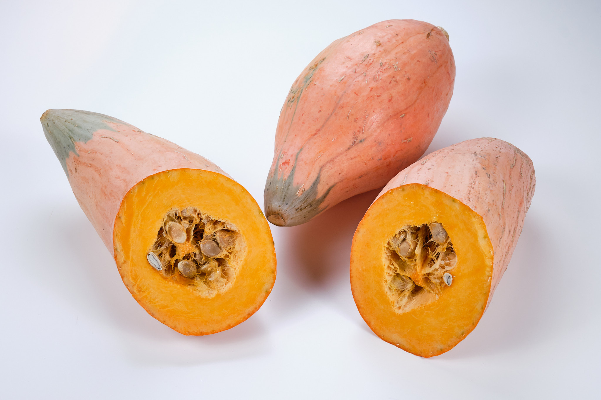 Ingredient Of The Day: North Georgia Candy Roaster Squash